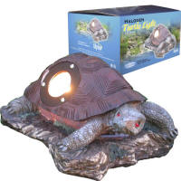 Turtle Light